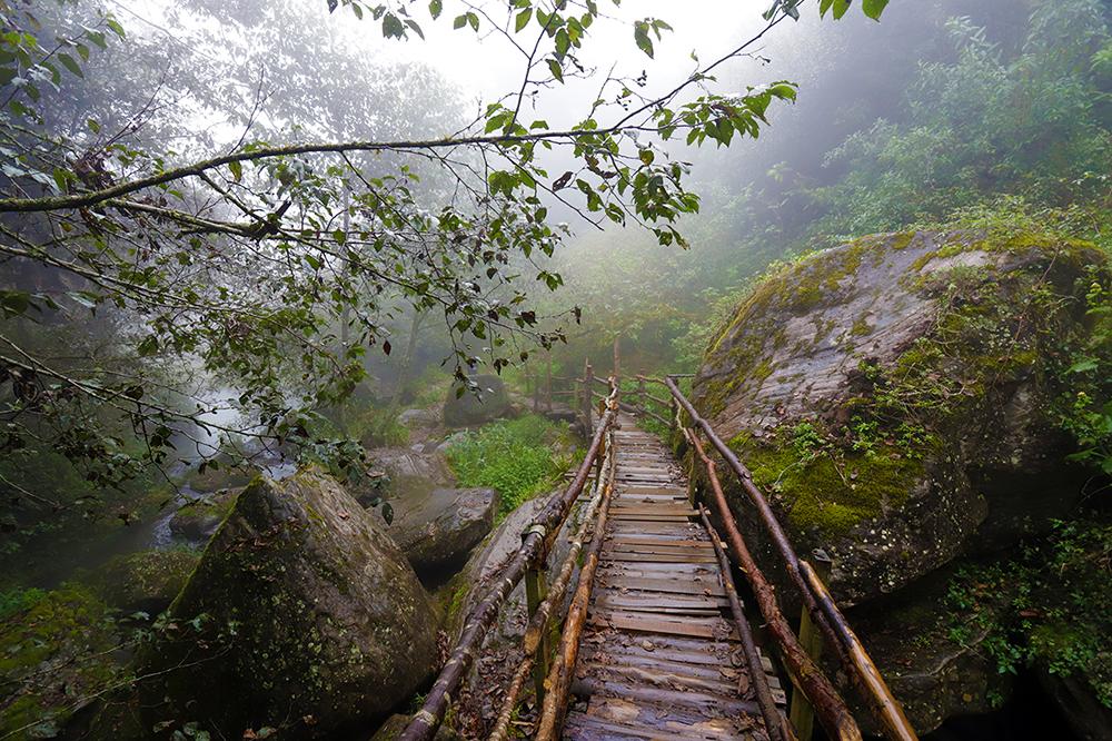 Puente en Cascadas de Paraiso Honey Puebla